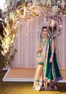 Dia Mirza Wedding photos 3